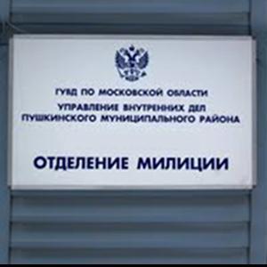 Отделения полиции Сосновского